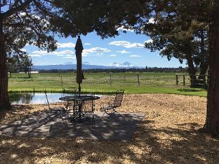 Lovely pasture setting with a view of the Cascades and your own pond -