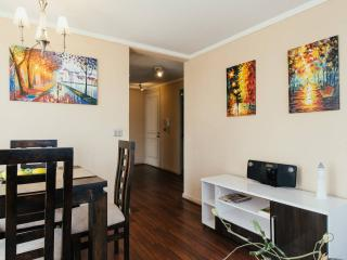 Comfortable entire apartment 2 bedrooms downtown, Santiago