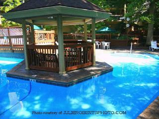 Condo Open~July 16-23 ~ $99/nt ~ 5 Pools/Hot Tubs, Gatlinburg