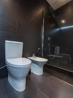 WC, bidet plus large walk in shower area.