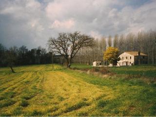 Can Jep Llarg Casa Rural, Cassa de la Selva