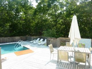 LARGE OPEN SPACE, POOL, PETS WELCOME