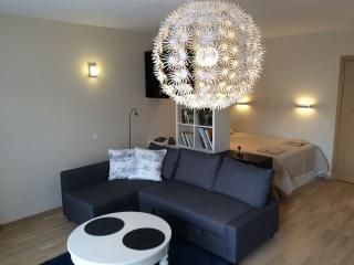Fully furnished, one bedroom flat, with patio, Palanga