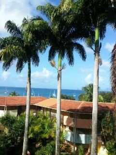 Studio Les pieds dans l'eau Martinique