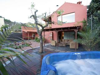 2 bedroom Villa in Vega de San Mateo, Canary Islands, Spain : ref 5491441
