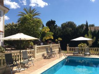 Het zwembad ( 10 x 5 meter) met ligstoelen in de grote tuin.