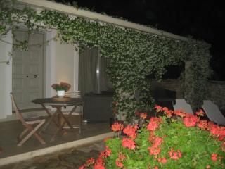 night time under the jasmine..
