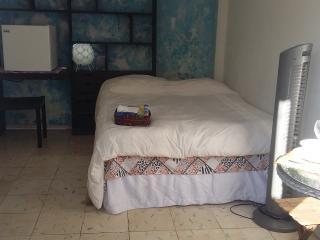 Estudios coco y mango en Cancún México