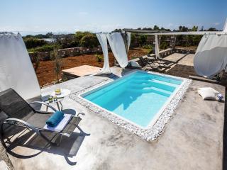 Villa Fuster Luxury Villa in Paros, Naoussa