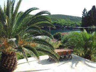 Apartments Mia-Molat - Ap5