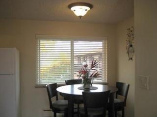 Sun-Filled 1 Bedroom Apartment - Seattle, Tukwila