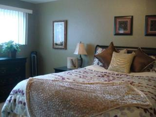 Light-Filled 1 Bedroom, 1 Bathroom Apartment in Tukwila