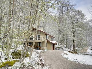 Gorgeous cabin with mountain views, near gondola & nature - walk to ski slopes!, Killington