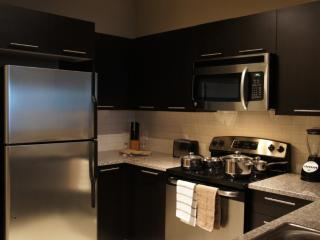 Light and Lovely 2 Bedroom 2 Bathroom Apartment in Houston