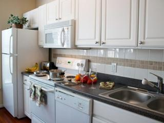 Furnished 1-Bedroom Apartment at Almeda Rd & Ewing St Houston