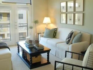 Furnished 1-Bedroom Apartment at Grogans Mill Rd & Riva Row The Woodlands, Spring