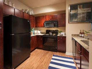Furnished 1-Bedroom Apartment at College Park Dr & Windsor Hills Dr Conroe