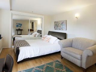 Furnished 1-Bedroom Apartment at California St & Joice St San Francisco