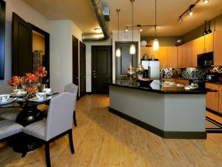 Furnished 1-Bedroom Apartment at Woodlands Pkwy & Waterway Ave The Woodlands