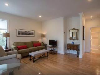 Sparkling Sun Filled 1 Bedroom Apartment, Somerville