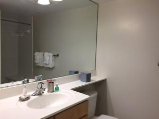 Furnished 2-Bedroom Apartment at East-West Hwy Silver Spring