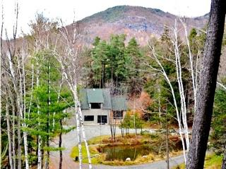 The Hurricane Lodge at ADKViews, Keene