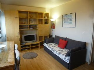 Apartment furnished 1 bedroom Porte de Versailles