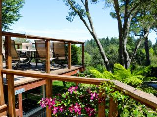 Heart of the Wine Country- 5 Bedroom, Sleeps 14, Sebastopol