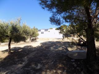 Eco house set in Olive Groves, Bitem
