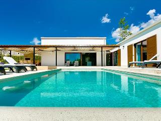 Beautiful newly bulit modern villa with private pool, Sveti Petar u Sumi