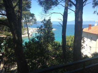 Apartment Radalj just 80 m from the beach