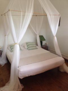 Chambre Moringa