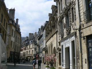 Studio de charme coeur de ville Dijon