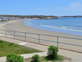 Two Beaches: Immaculate single-level 3BR between Long Beach & Good Harbor