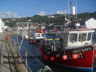 Portreath's summer fishing fleet