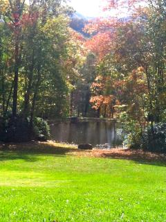 The pond in autumn - each season brings unique Smokey Mountain pleasures & views