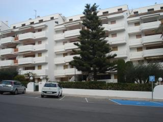 Front Line Apartment, 50 Metres to beach