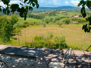 Tuscan Villa with pool and garden front of Siena