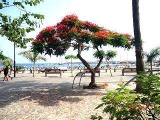 Nice sea views in Las Vistas beach