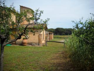 Old country house in Maremma near the beach, Punta Ala