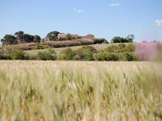 Domaine de Beaumont French villas with pools with pools (Ref: 1038), Marseillan