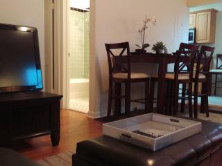 Amazing 1/1 Minutes From Everything!!!, West Palm Beach