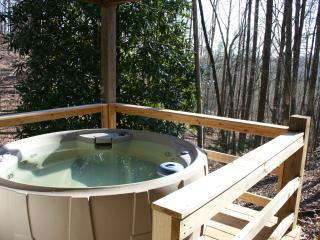 Quiet Cabin, Carter's Lake, Hot Tub, Dogs Welcome!, Ellijay
