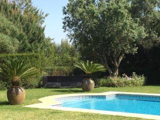 Paradise Villa VI - 4 Bedroom with Pool