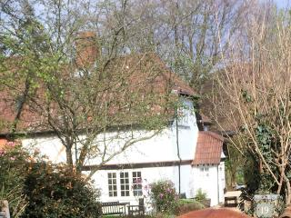 Country Cottage central location Burley New Forest