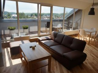 New 2016 Napoleon Hill apartment with terrace, Kaunas