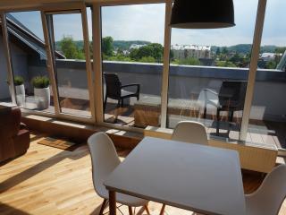 New 2016 Napoleon Hill apartment with terrace, Kaunas