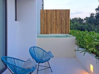 SAASIL Terrace Condo #11
