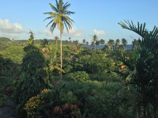 OCEANVIEW APARTMENT (POOL & BEACH ACCESS) with WIFI - Casa Cassini Tobago, Scarborough