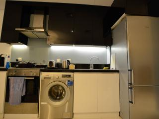 Nicely Furnished Studio in Capital Bay, Dubái